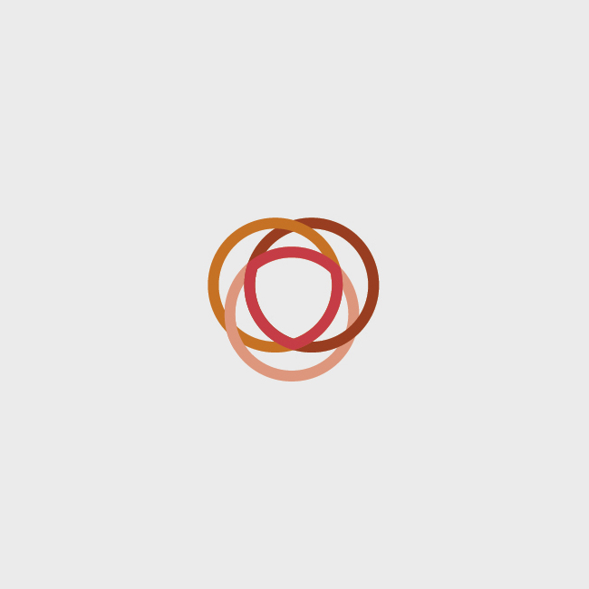 logo_intersectional